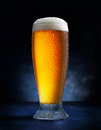 Glass of beer on dark blue background Royalty Free Stock Images