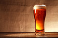 Glass of beer full freshness with foam on table against gray canvas background Royalty Free Stock Photos