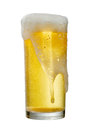 Glass of beer isolated on white background,clipping path. Royalty Free Stock Photo