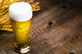 Glass of beer and wheat on wooden table Royalty Free Stock Image