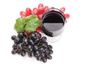 Glass of black wine and grapes on white background Royalty Free Stock Images