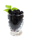 Glass of blackberries ripe fresh organic blackberry on a white background Stock Photo