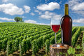 Glass and bottle of red wine against vineyard landscape Royalty Free Stock Photography