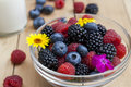 Glass bowl of fresh blackberries, raspberries, blueberries Royalty Free Stock Photo