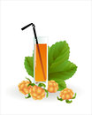 Glass of cloudberry juice on a white backgraund Stock Photos
