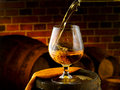 Glass of cognac set in cellar Stock Image