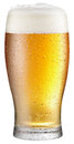 Glass of cold beer on a white background. Royalty Free Stock Photo
