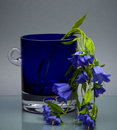Glass cup with delicate flower on gray Royalty Free Stock Images