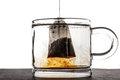 Glass cup with water and tea bag Royalty Free Stock Photo