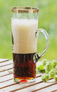 Glass of dark beer and hop branch Stock Image