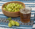 Glass with a drink of hops and branch of hops withglass on the background traditional ukrainian embroidered towel Royalty Free Stock Photos