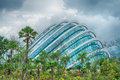 Glass enclosure, Gardens by the Bay, Singapore Stock Images