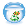 Glass fishbowl with a fish Stock Image
