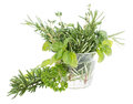 Glass with fresh Herbs Stock Photos