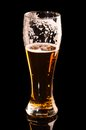 Glass fresh lager beer black reflection Stock Images