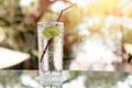 Glass of fresh sparkling mineral water and a lime Royalty Free Stock Photo