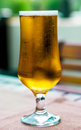 Glass of freshly poured beer on a table Royalty Free Stock Photography