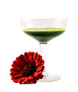 Glass full with green cocktail and a red flower on a white background Royalty Free Stock Photo