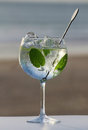 Glass of gin with peppermint spices on a beach Stock Images