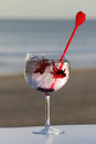 Glass of gin with spices on a beach Stock Image