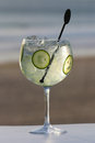 Glass of gin with spices on a beach Royalty Free Stock Photos