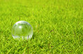 Glass globe on nice green grass an environmental concept Stock Images