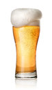Glass of light beer Royalty Free Stock Photo