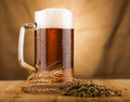 Glass of light beer on table Royalty Free Stock Photo
