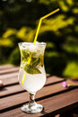 Glass with mojito view of in garden Royalty Free Stock Photos
