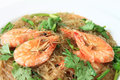 Glass Noodles steamed with Prawns Stock Image
