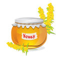 Glass pot full of honey Stock Photos