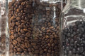 Glass pots containing different types of coffee beans close up pot roasted beside other one with torrefacto Stock Photography