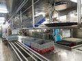Glass Racks in Commercial Dishwashing Kitchen