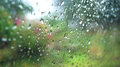 Glass raindrops on a background Royalty Free Stock Photo