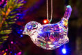 Glass robin christmas ornament hanging on a tree with lights in background Stock Photos