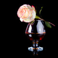 Glass and rose alcohol flower with drink a pink Royalty Free Stock Photos