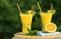 Glass's Of Fresh Squeezed Orga Royalty Free Stock Photography