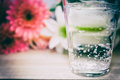 Glass of sparkling water Royalty Free Stock Photo