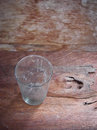 Glass and spider web dirty old with inside on wooden background Stock Image