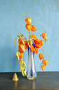 Glass vase dry husk tomato flowers vintage brass bell Royalty Free Stock Image