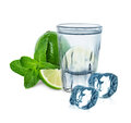 Glass of vodka with lime, mint and ice cubes Royalty Free Stock Photo