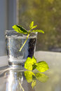 Glass of water and mint on white table