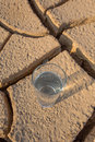 A glass of water on parched soil x during drought and dry season Royalty Free Stock Images