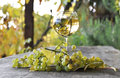 Glass of white wine and grapes a bunch Royalty Free Stock Photos