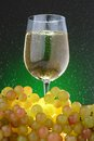 A glass of white wine and grapes with green rain drops on green background Stock Image