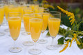 Glasses with champagne and orange juice on wedding greeting Stock Photos