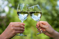 Glasses clinking two people each other s with water Royalty Free Stock Images