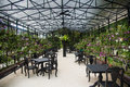 Glasshouse with tables and chairs Royalty Free Stock Photo