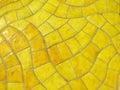 Glazed yellow stone texture wall Stock Photos