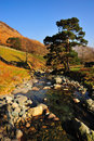 Glenridding Beck Cumbria Stock Images